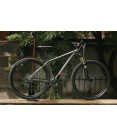 TRUE Bike hardtail