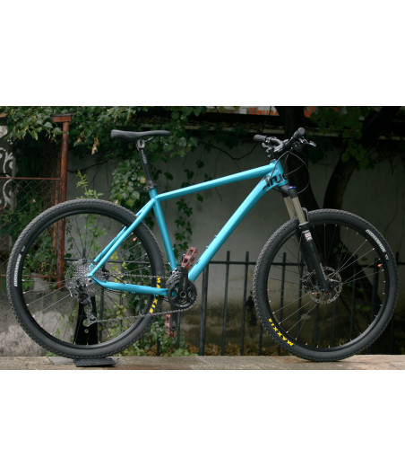 TRUE Bike hardtail